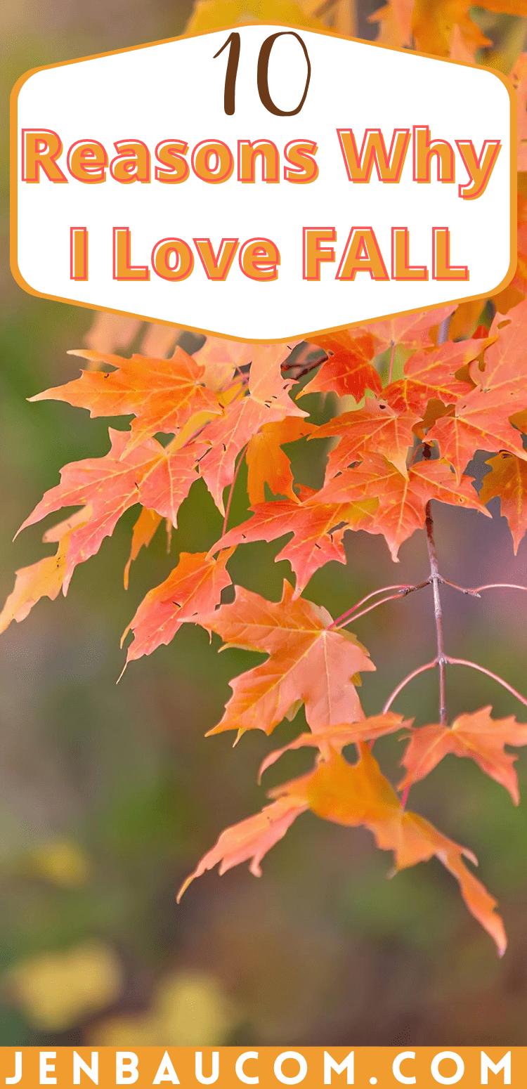 10 reasons why I love fall