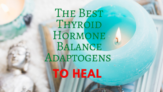 the best thyroid hormone balance adaptogens to heal check it out at jenbaucom.com #thyroidhealth #adaptogens