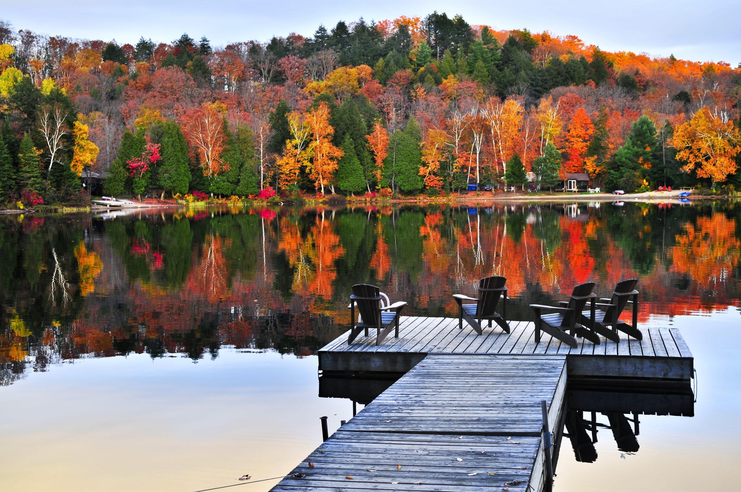 10 Badass Reasons why I love the Fall season