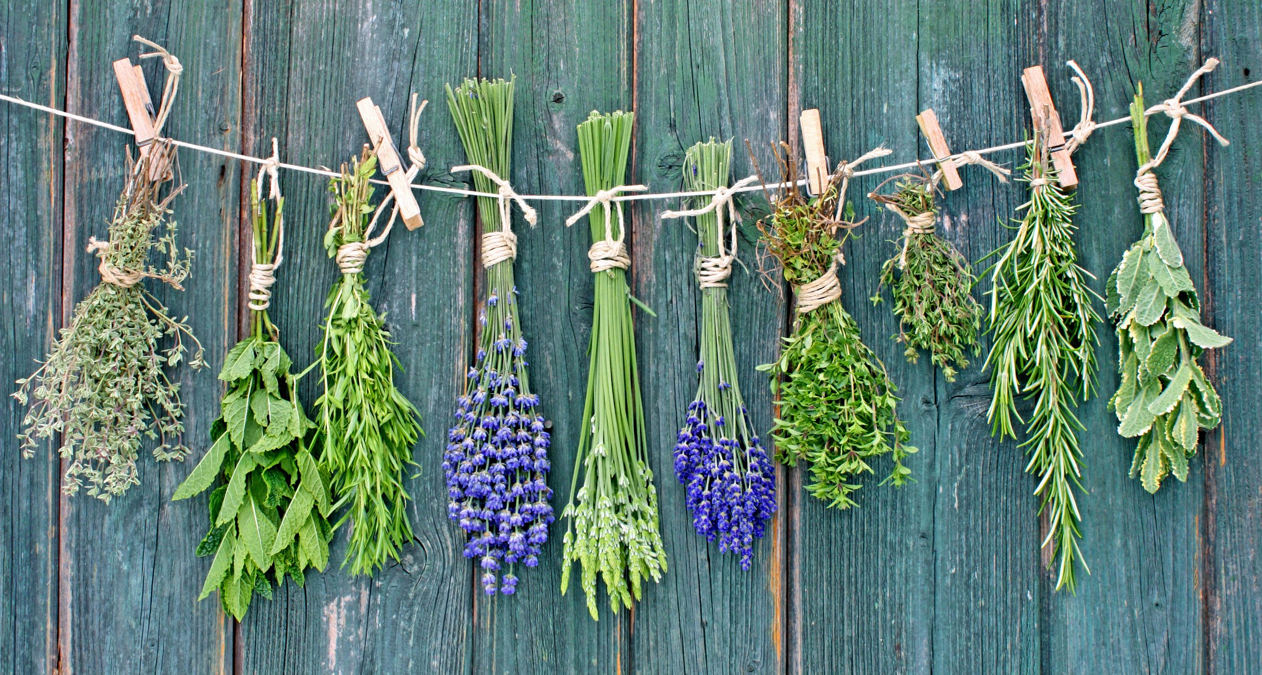 Herbs are so healing for your thyroid and for a healthy life! #herbsforhealth #thyroidhealth #hypothyroid